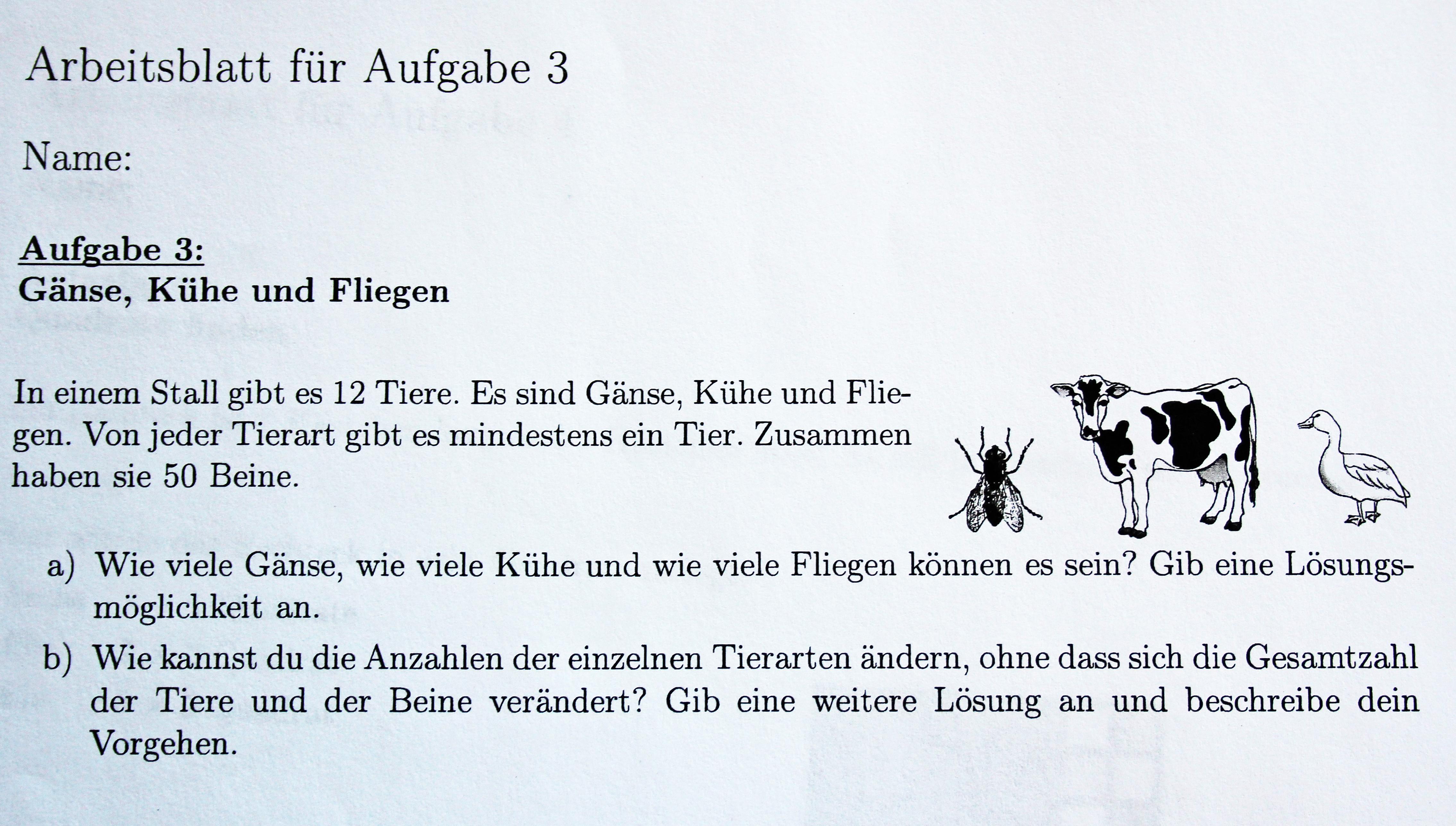 Oberbergischer Kreis: Junge Mathe-Genies im Kreishaus geehrt