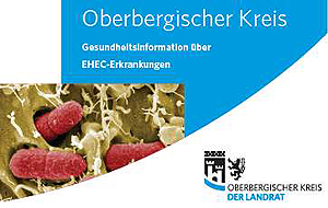Bild-Ausschnitt aus dem Merkblatt EHEC-Erkrankungen auf der OBK-Startseite