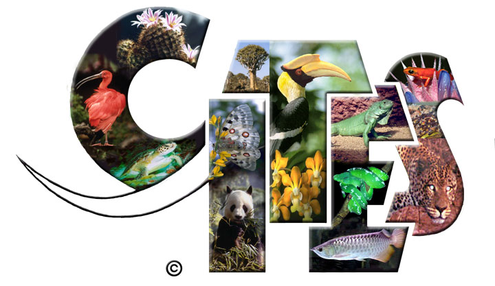 Logo CITES ((Convention on International Trade in Endangered Species of Wild Flora and Fauna)